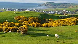 Ballantrae village, Ayrshire self-catering